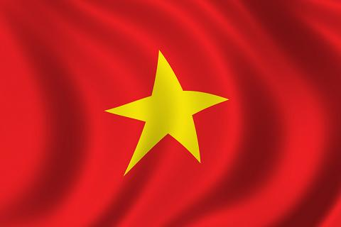 Flag of Vietnam, Vietnamese Flag